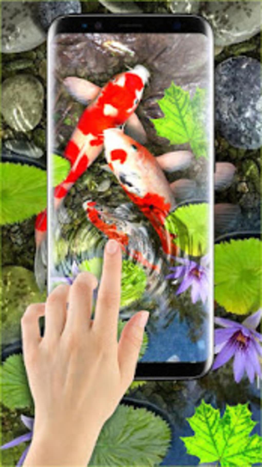 3d koi fish wallpaper hd 3d fish live wallpapers for - 3d koi pond live wallpaper iphone ...