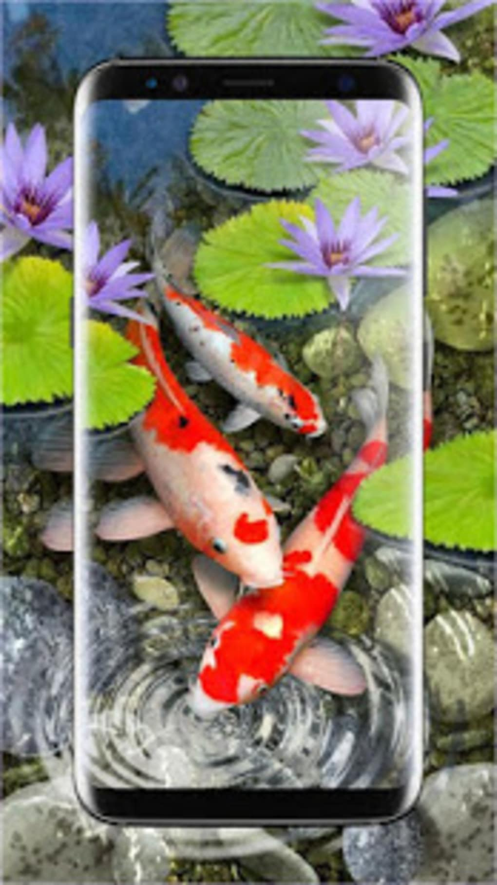 3D Koi Fish Wallpaper HD 3D Fish Live Wallpapers For Android