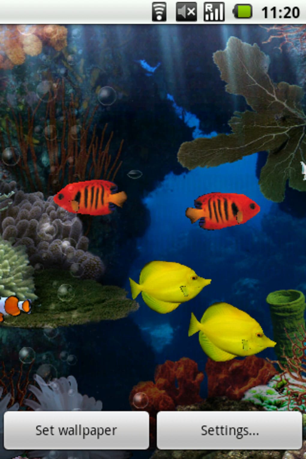Aquarium Live Wallpaper Para Android Descargar