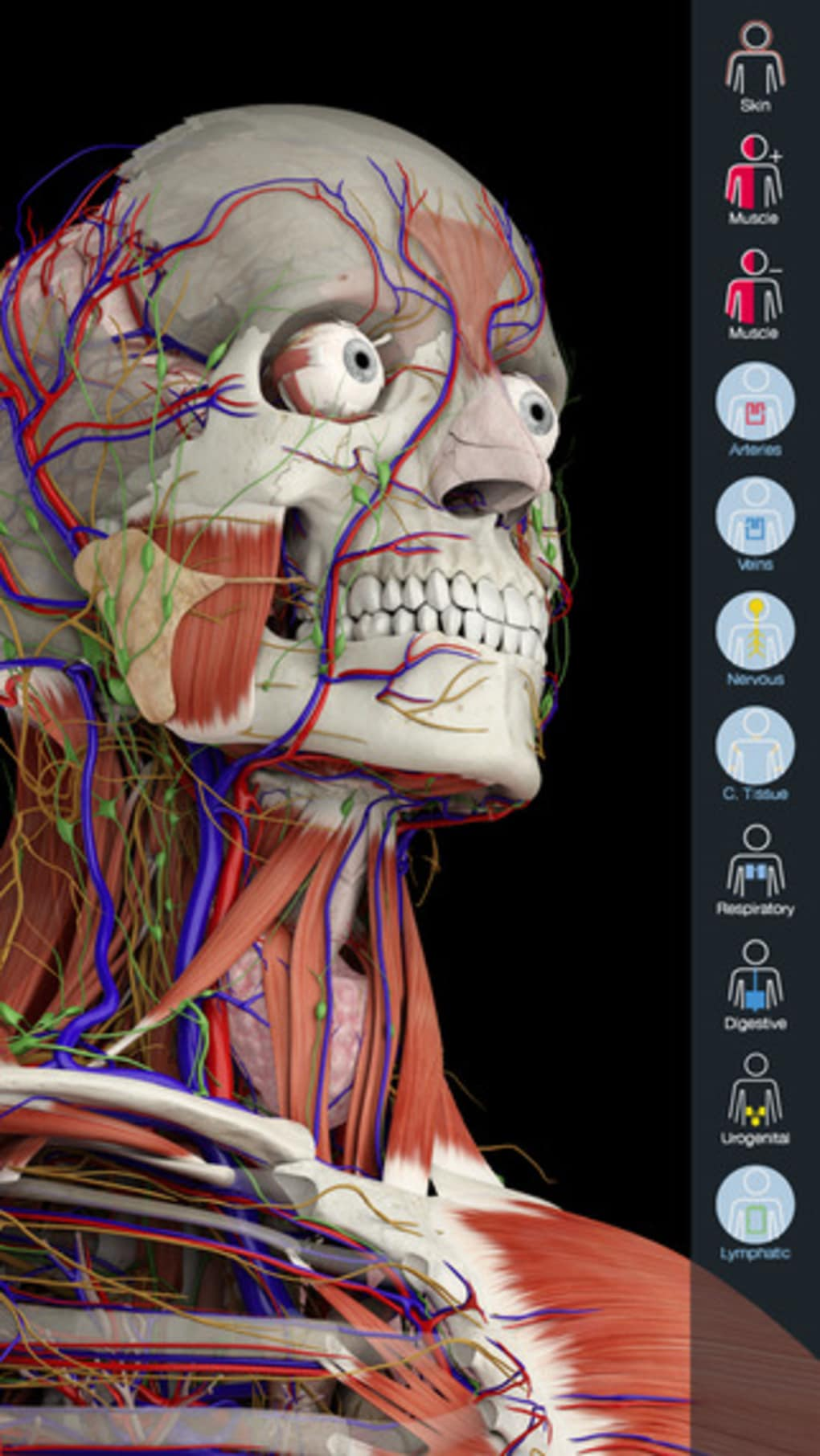 Essential Anatomy for iPhone - Download