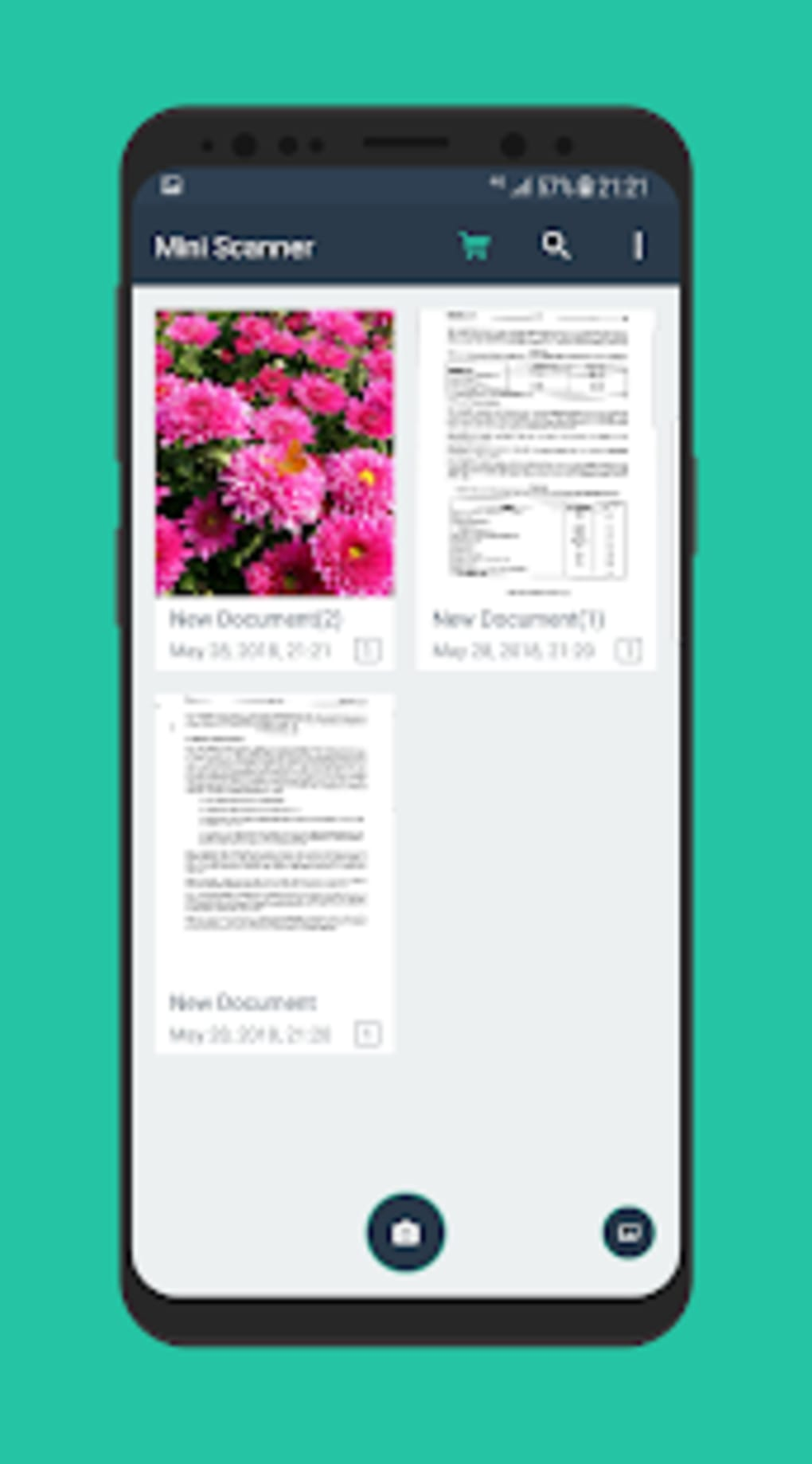 online Flower Guide for Holiday