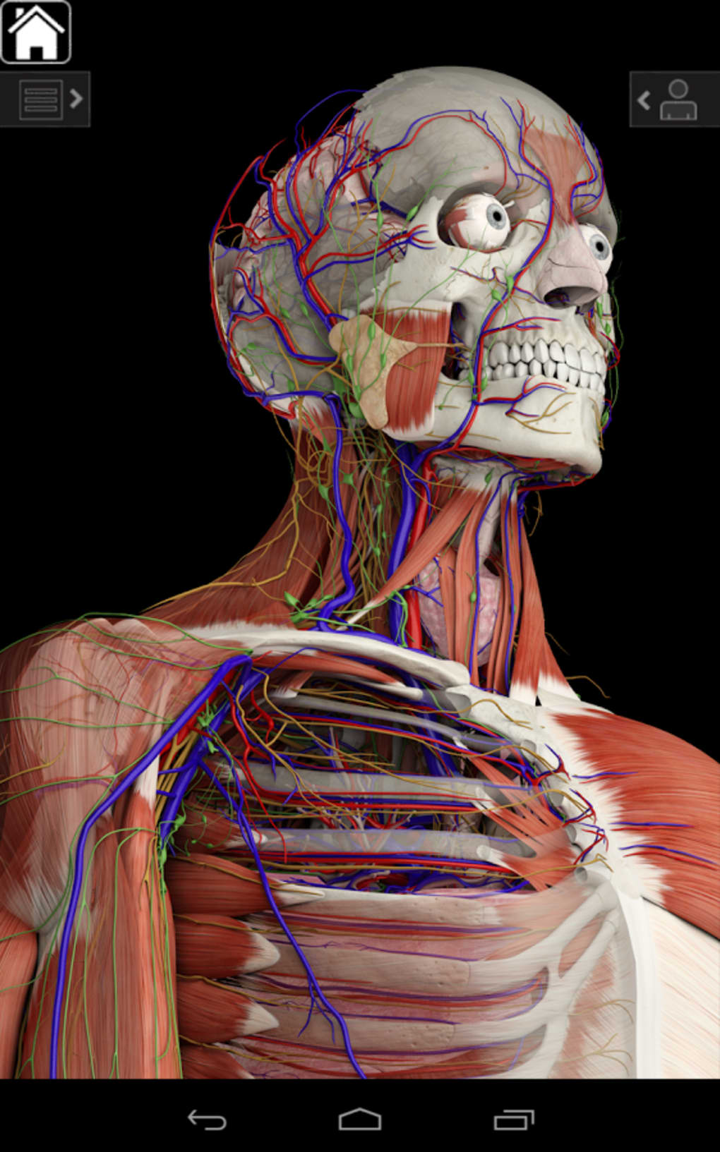 Essential Anatomy for Android - Download
