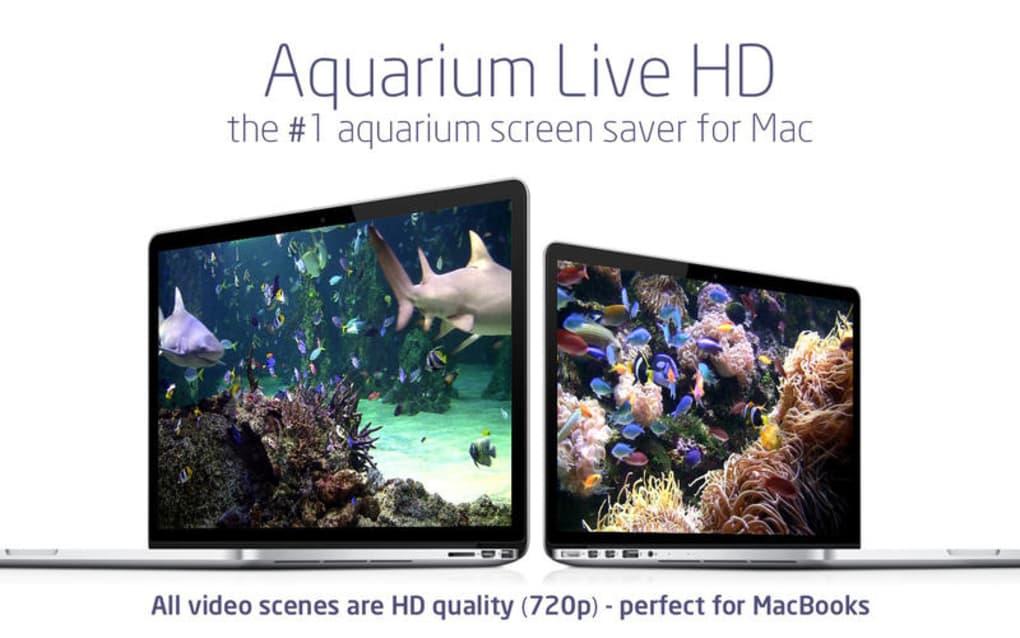 Aquarium Live Hd Relaxing C Reef Screensaver Clock 1 Screenshots