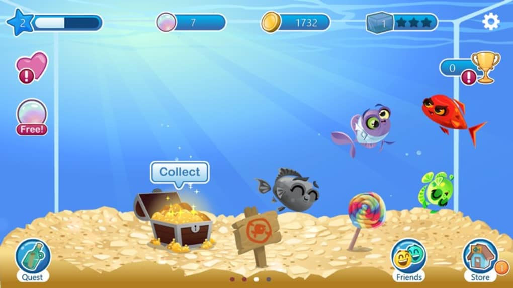 Fish with attitude for windows 10 windows download for Fish with attitude 2