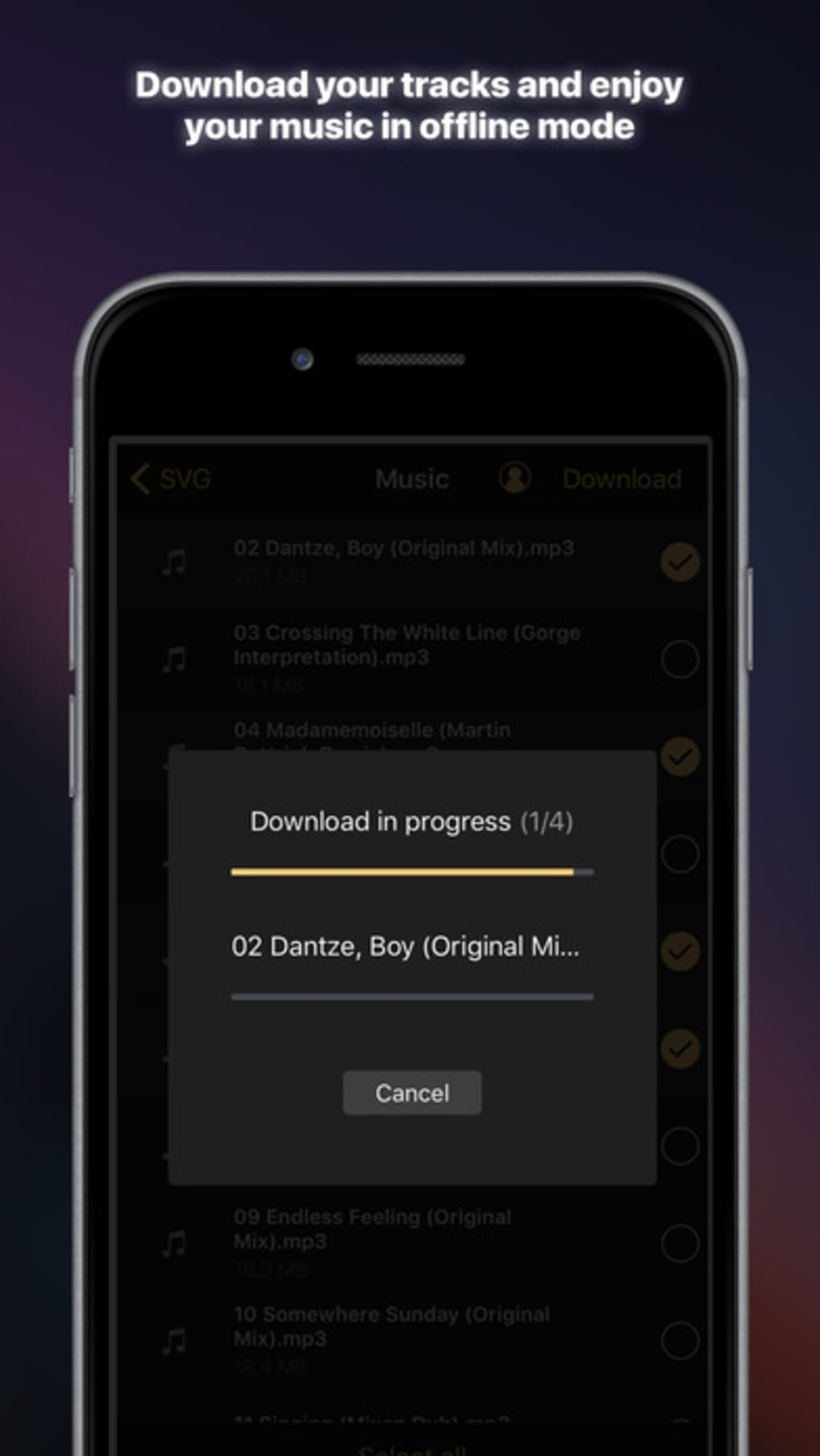 Equalizer+ premium: music player & bass booster for iPhone - Download