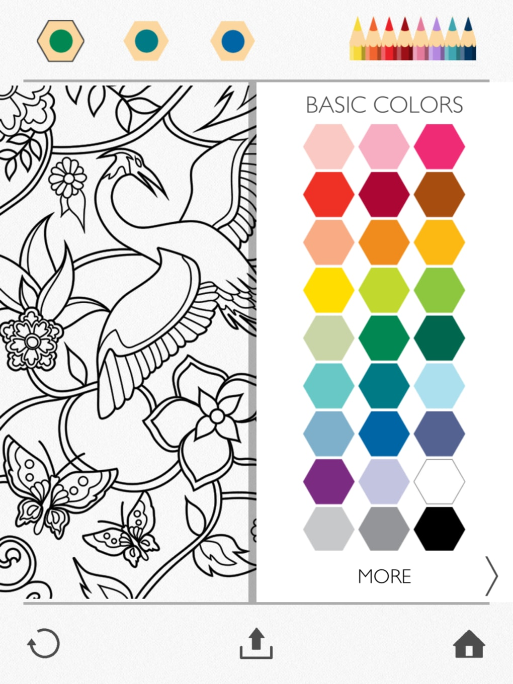 Colorfy For IPhone