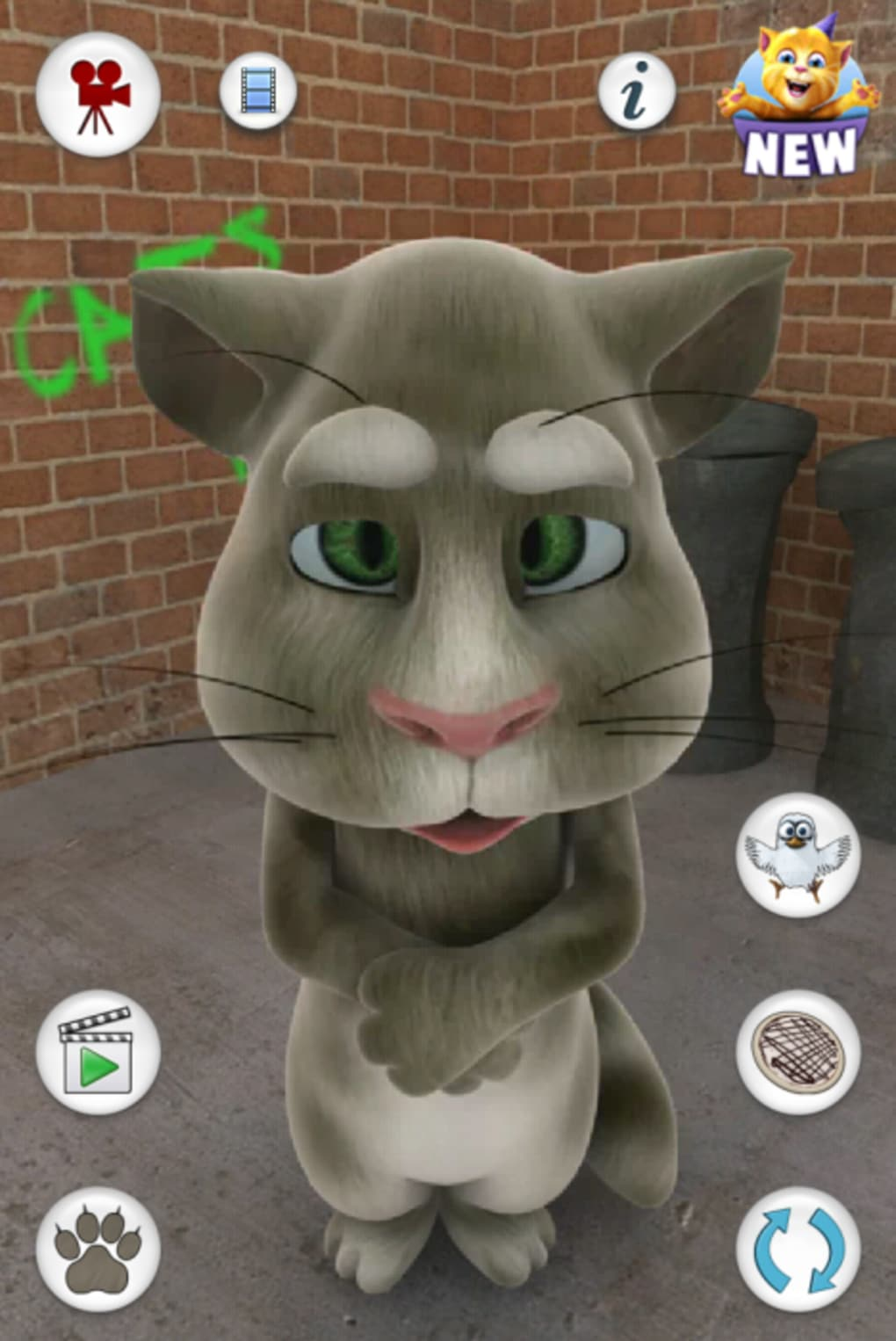Talking tom cat for android download - My talking tom pictures ...