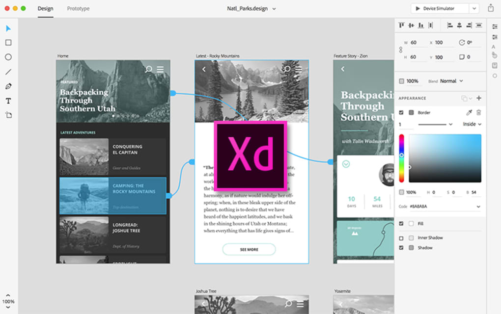 adobe xd price