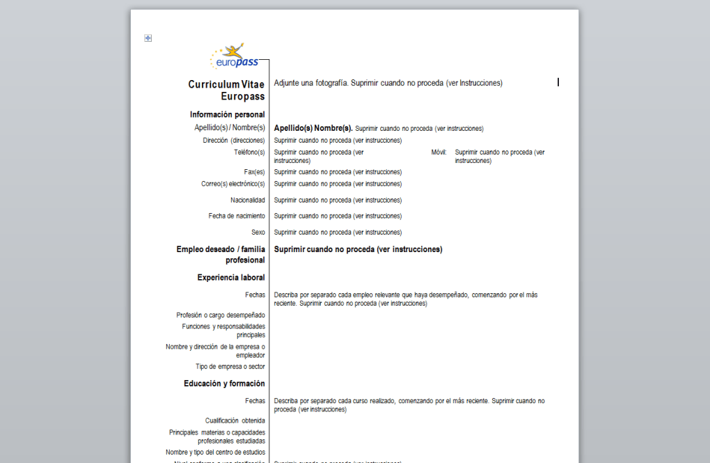 European Cv Download