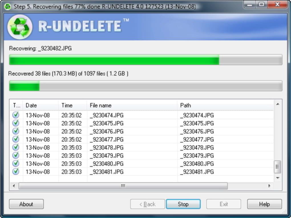 R-Undelete - Download