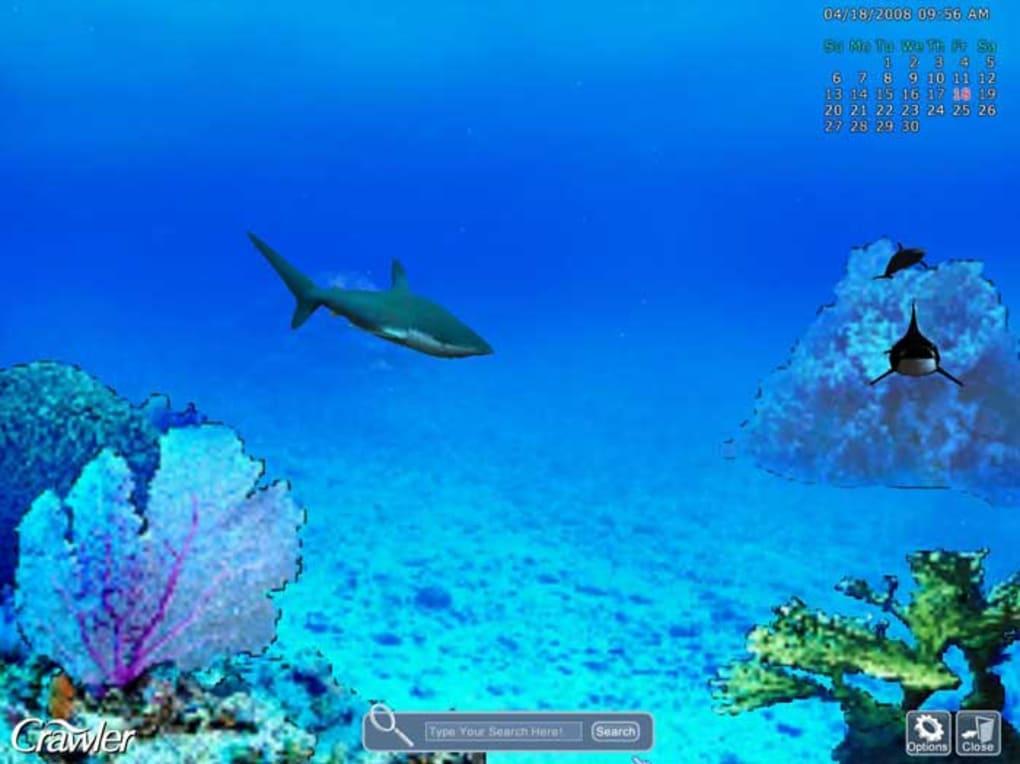 aquarium screensaver windows 8