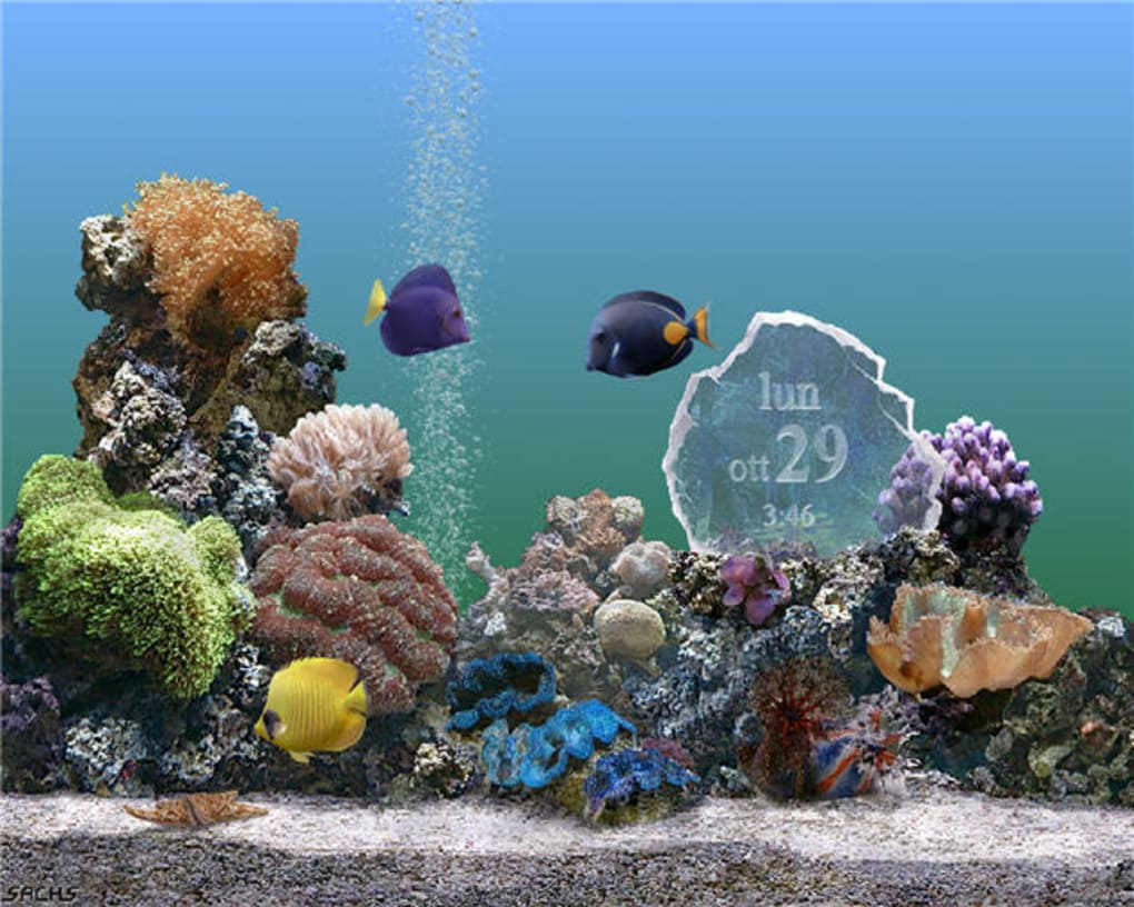 screen saver acquario