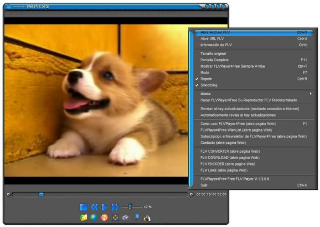 flvplayer4free free flv player