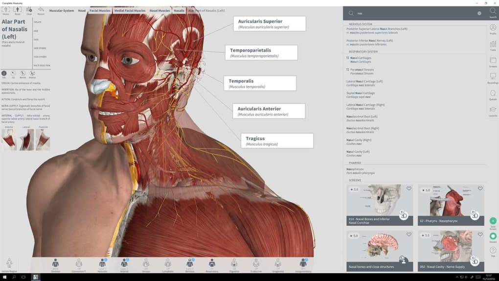 Complete Anatomy Download