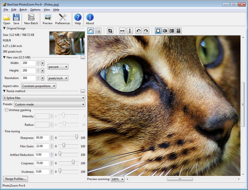 benvista photozoom pro 4.0.2