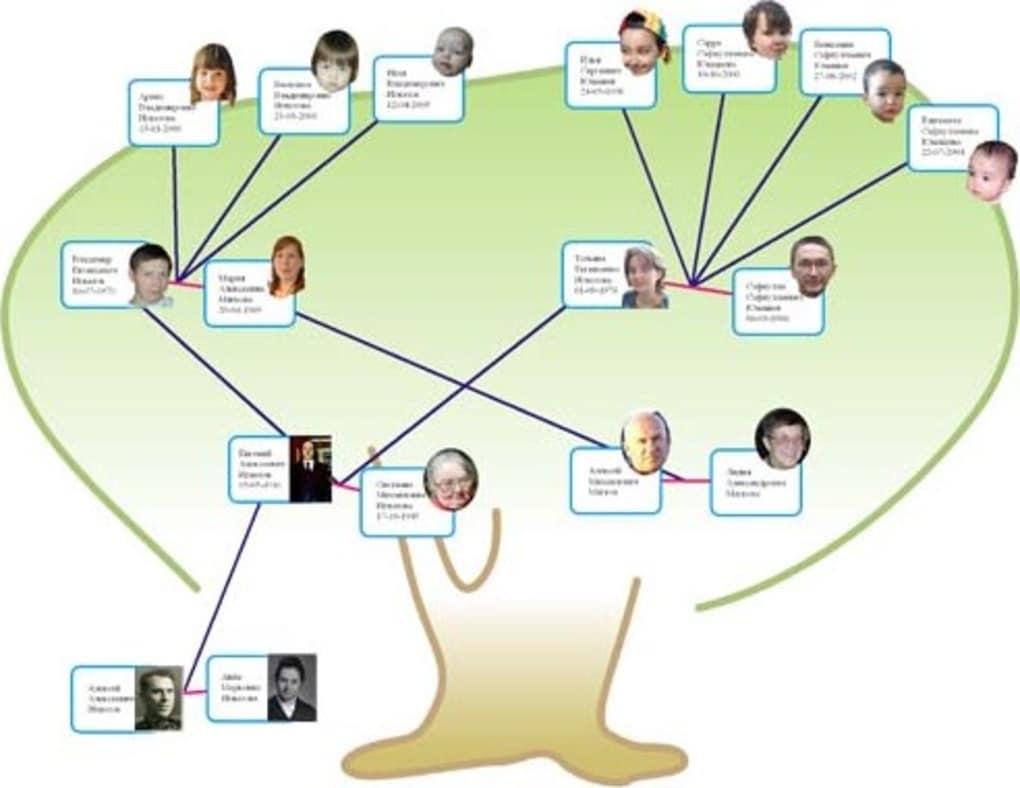 Family Tree Pilot Download