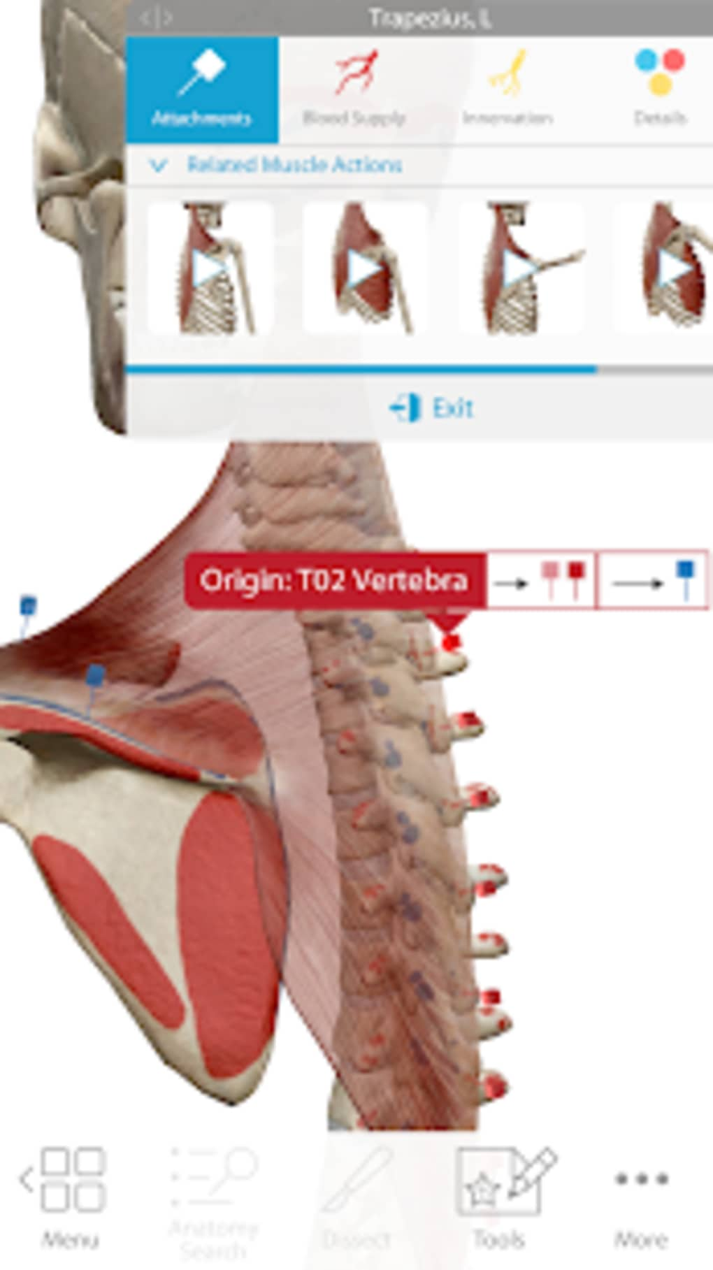 Human Anatomy Atlas 2018 Complete 3D Human Body for Android