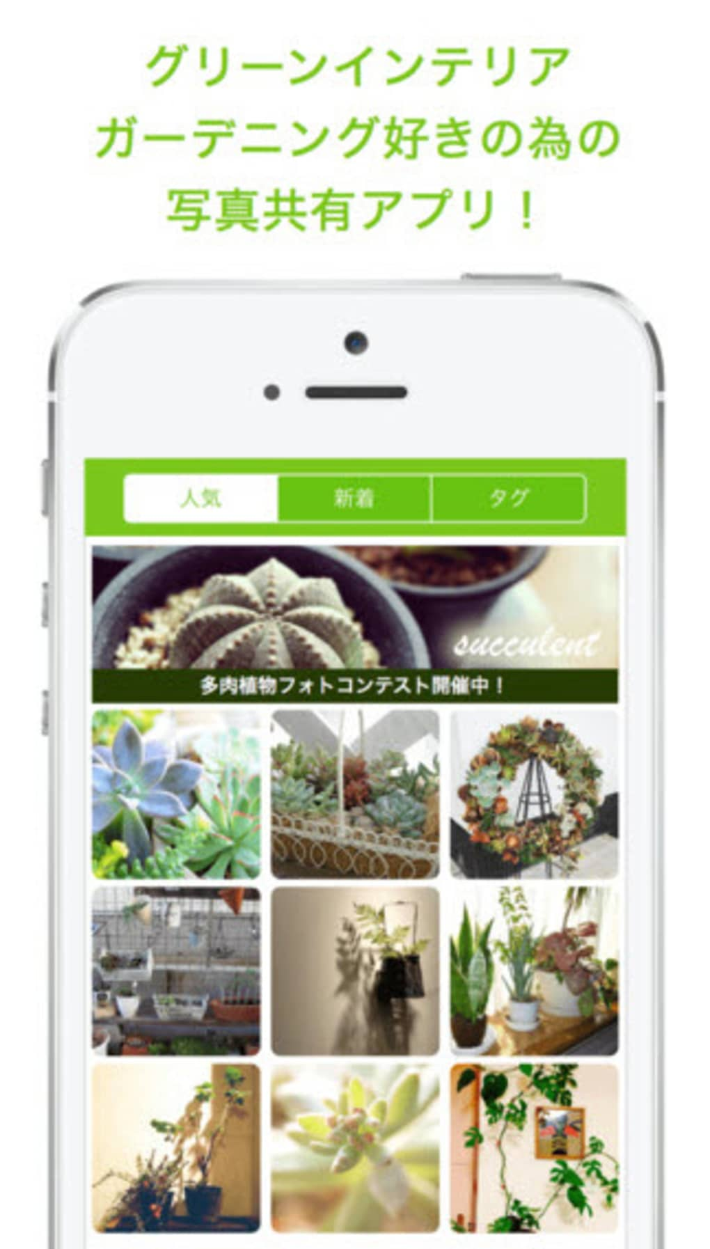 スナップ アプリ グリーン