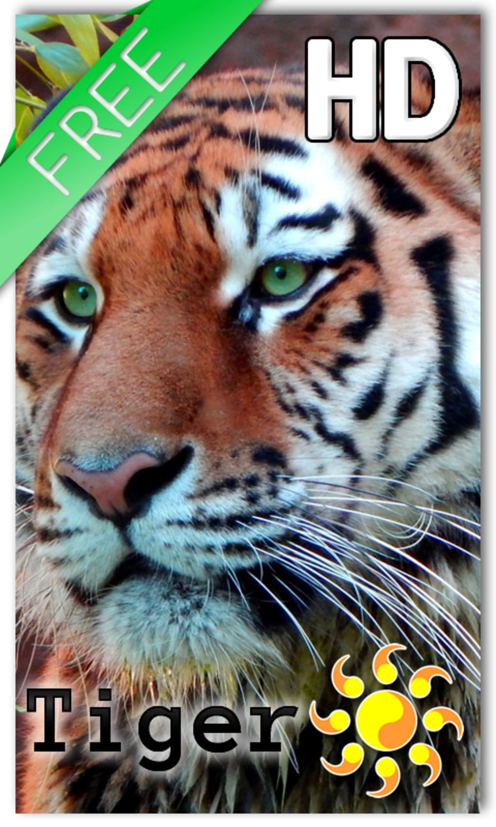 Tiger Live Wallpaper For Android Download