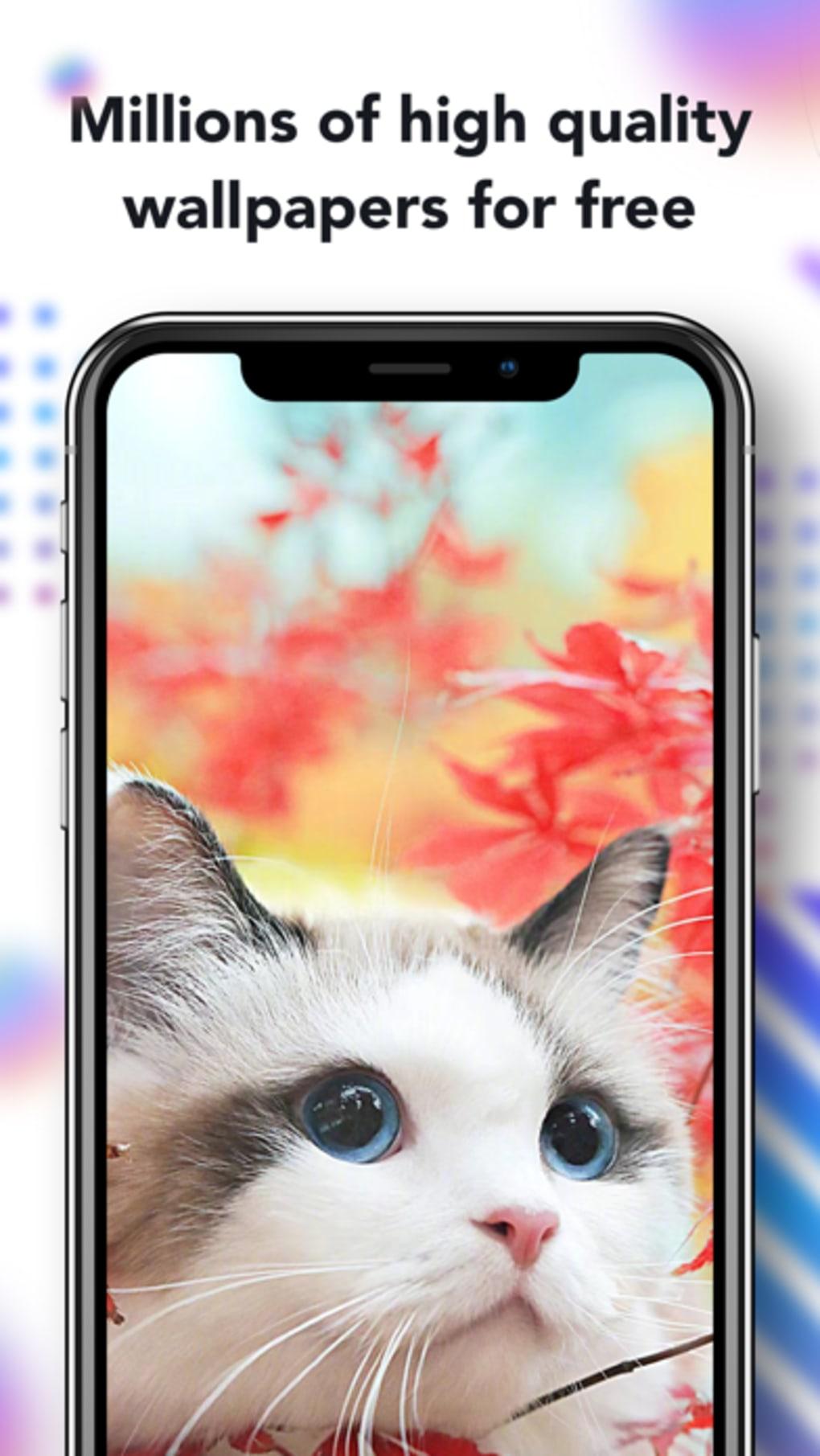 Nox Lucky Wallpaper para iPhone - Descargar