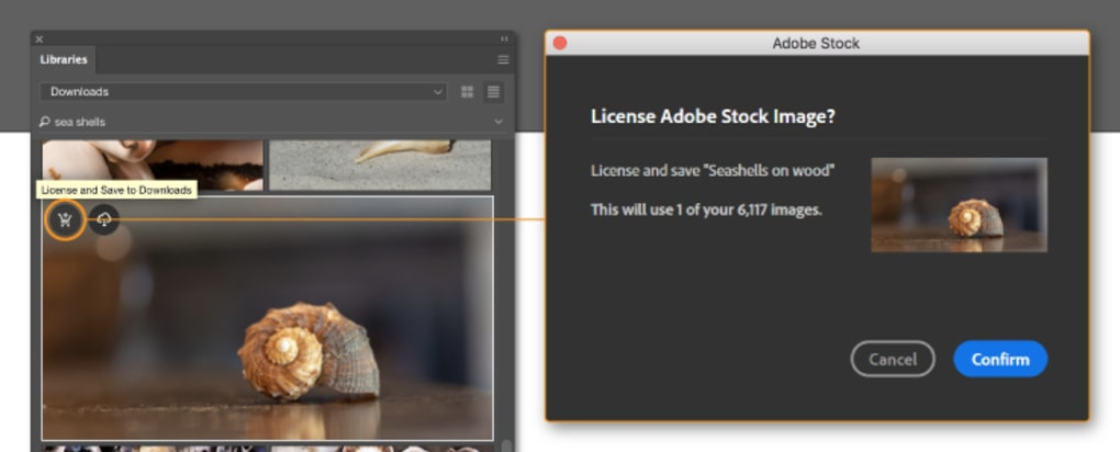 adobe illustrator cs5 free download for windows 7 64 bit