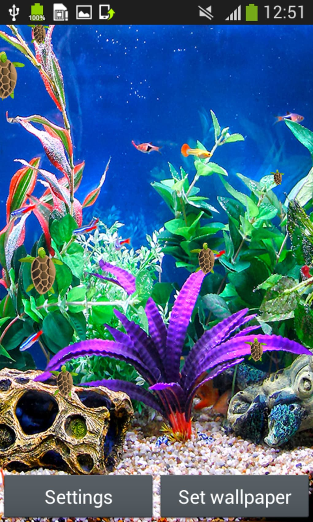 Aquarium Live Wallpapers For Android Download