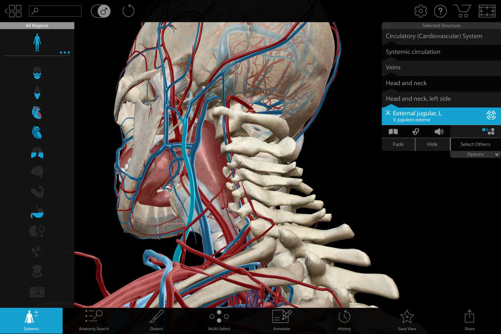 Human Anatomy Atlas 2018: Complete 3D Human Body - Download