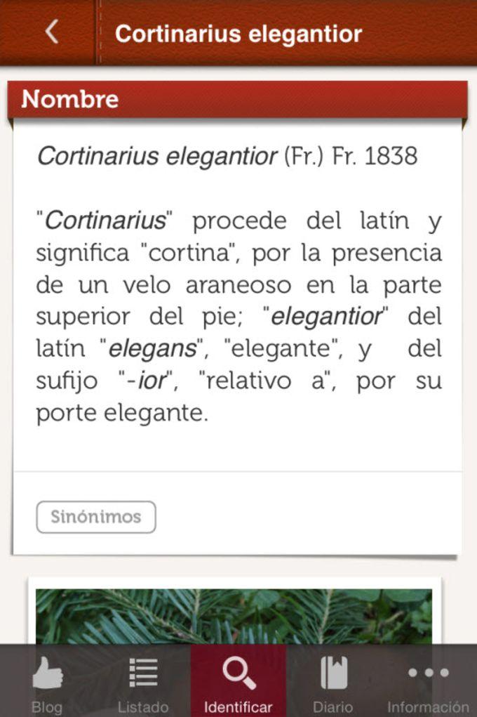 Funginote