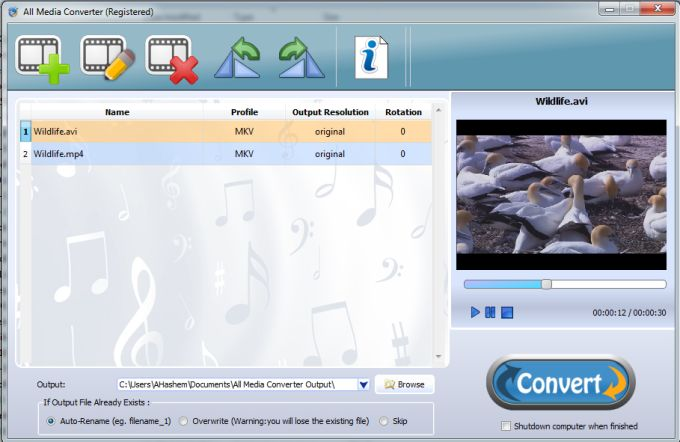 all media converter free download full version