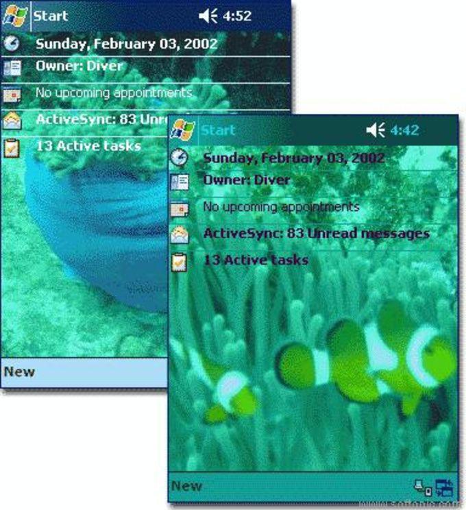 Clownfish Theme