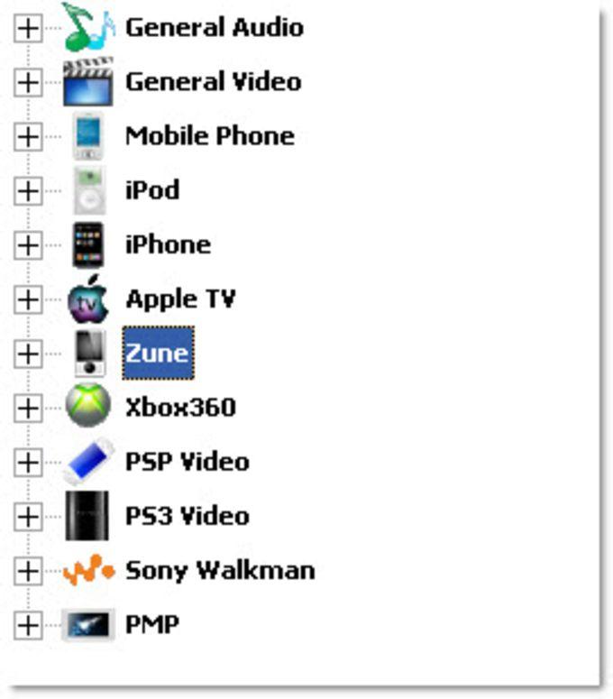 FLV to AVI MPEG WMV 3GP MP4 iPod Converter