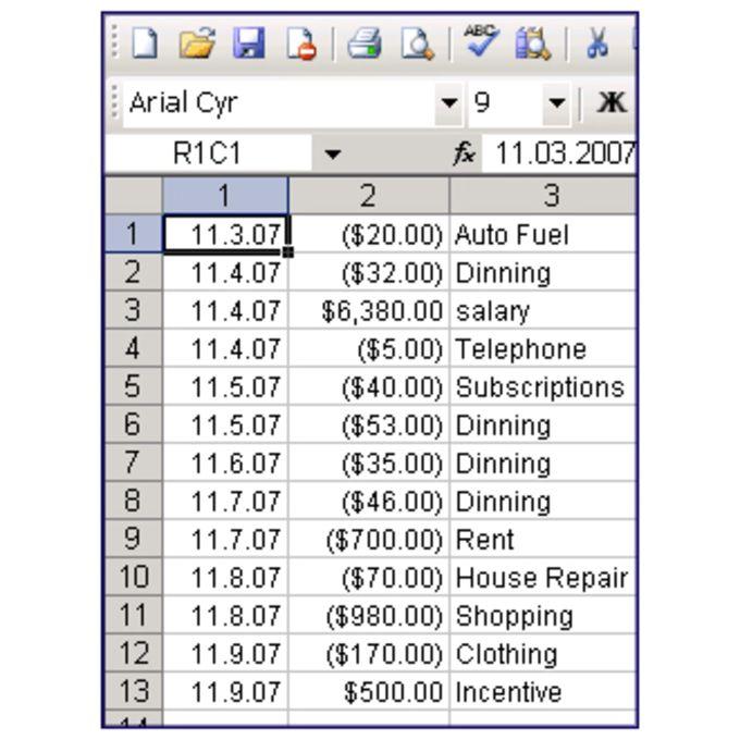 Pocket Finance Diary