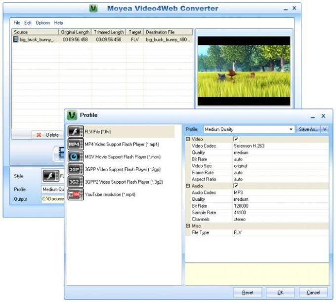 Moyea Video4Web Converter