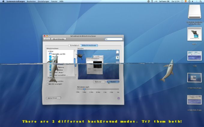 Desktop Dolphins 3D Screen Saver