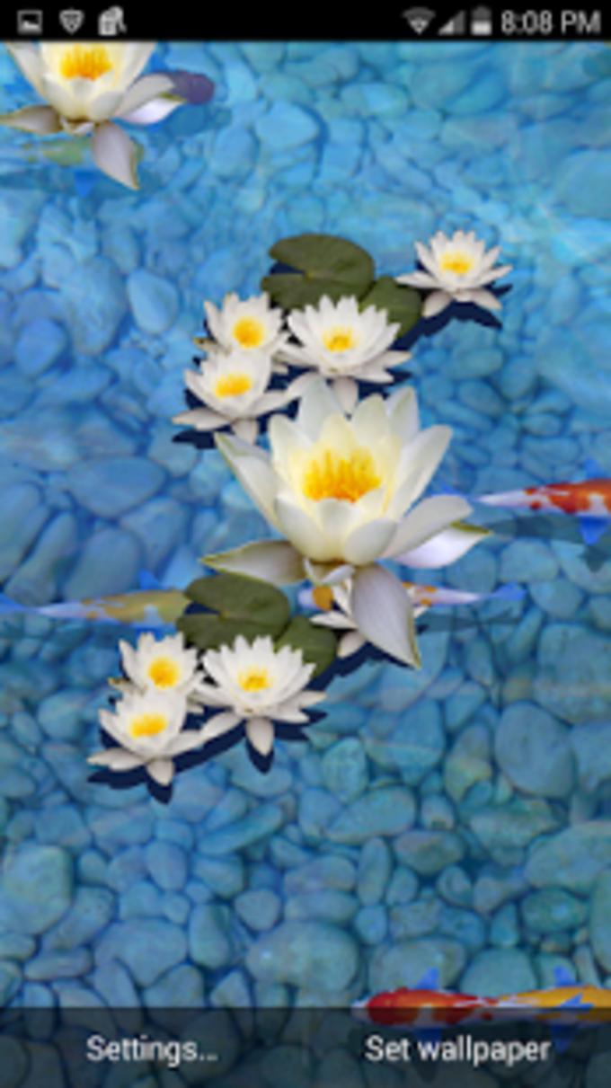 3D Fish Pond Live Wallpaper
