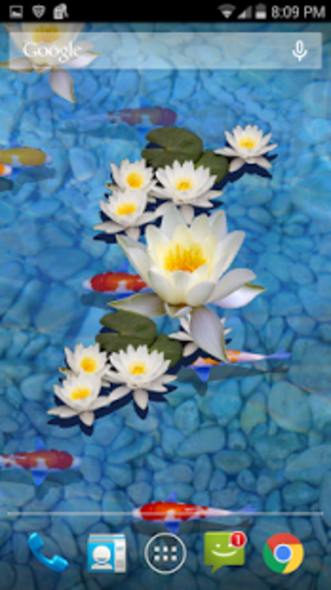 3D Fish Pond Live Wallpaper