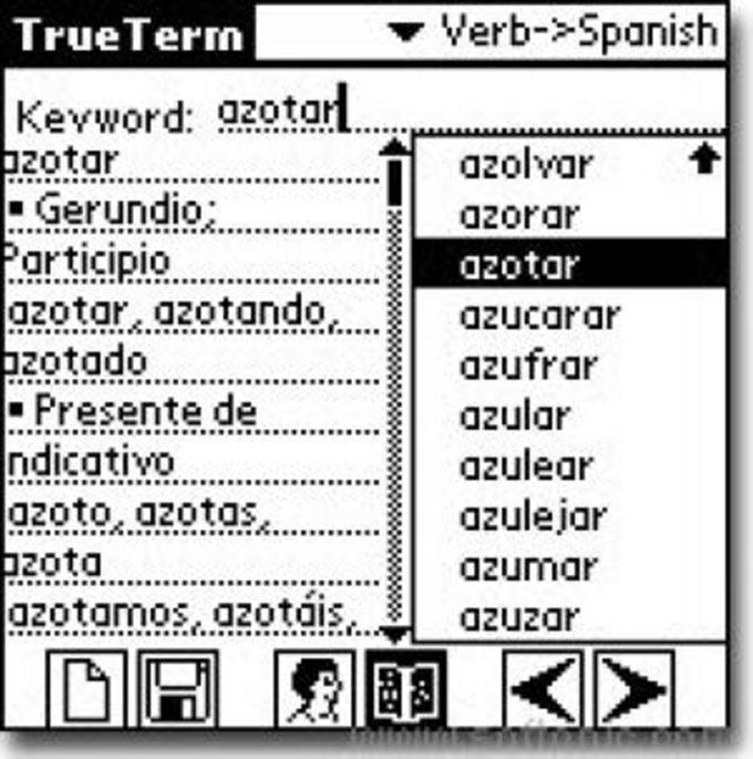 TrueTermFlex- Conjugation (Spanish)