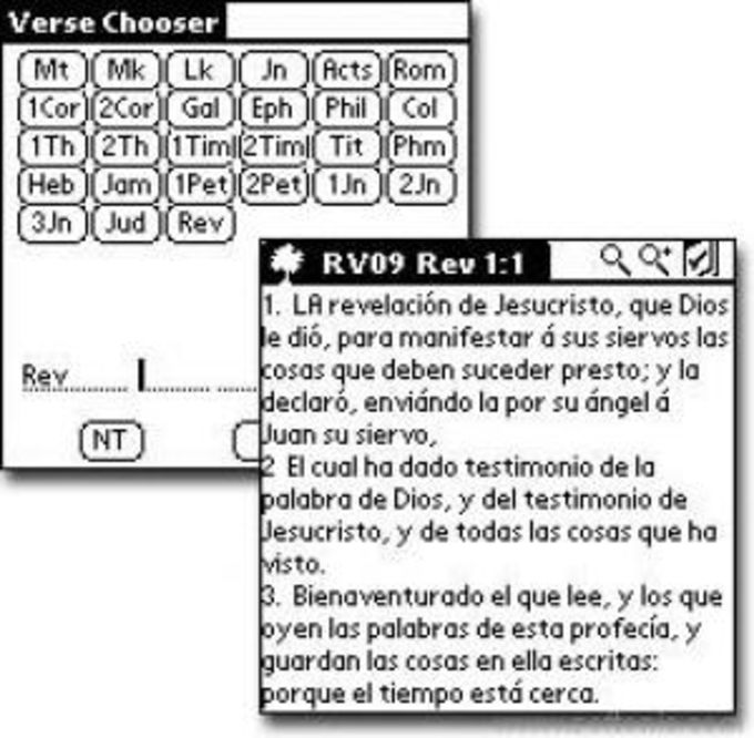 Spanish New Testament Bible