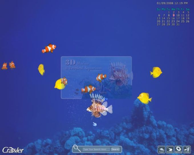 3D Tropical Aquarium Screensaver