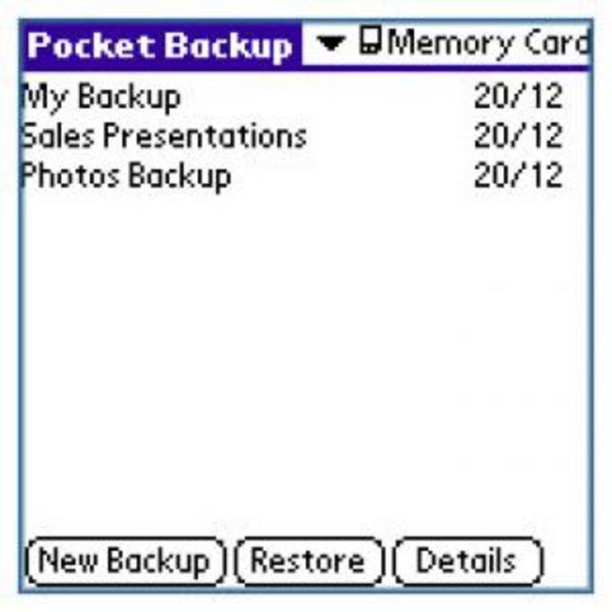 Pocket Backup