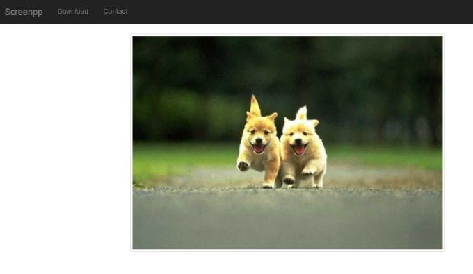 Screenpp - a free screenshot tool
