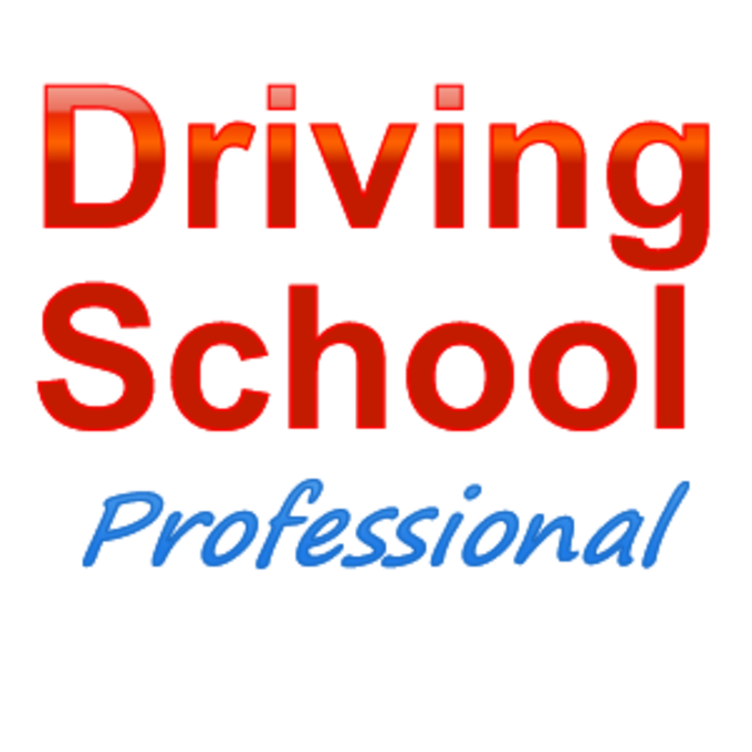 Driving School Professional