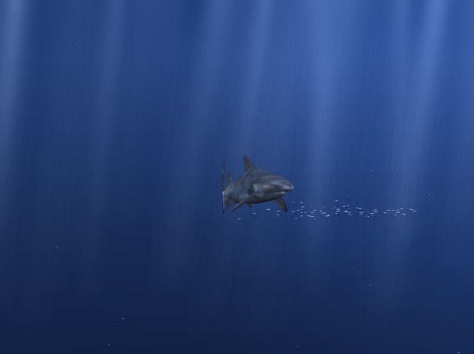 Aquazone 2: Oceans of the World
