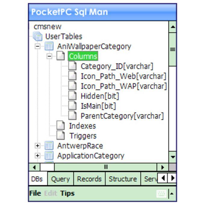 PocketSqlMan