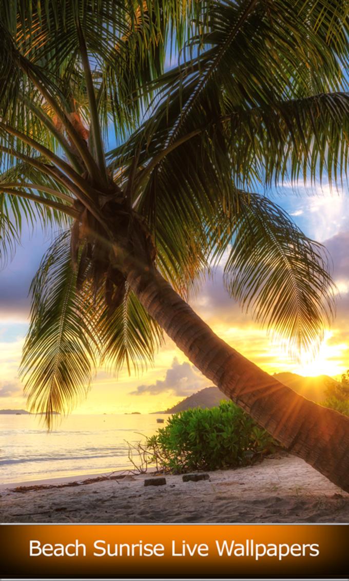 Beach Sunrise Live Wallpapers