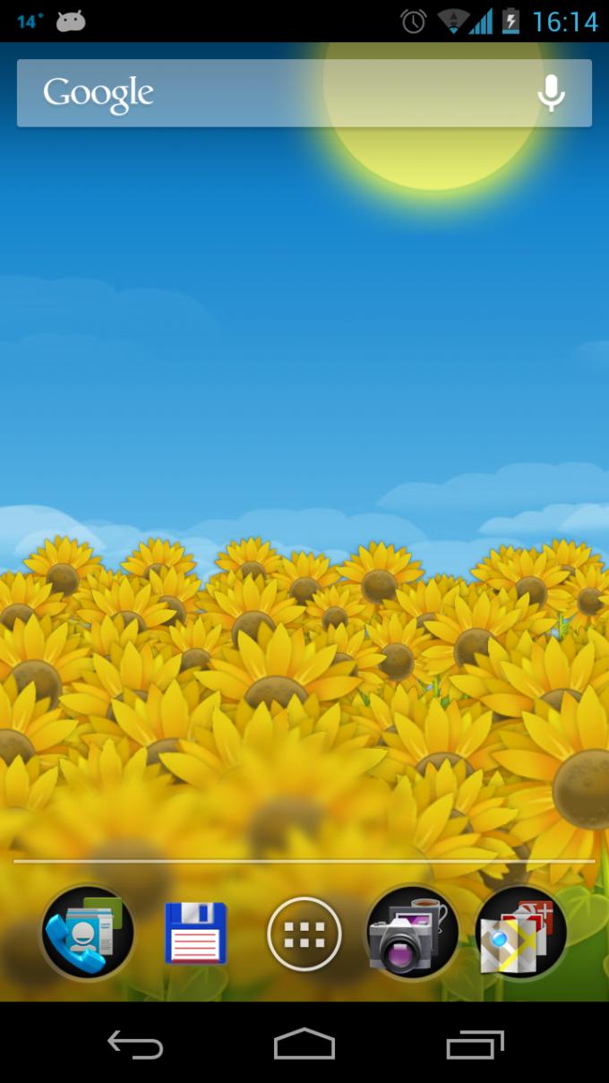 Sunflower Field Live Wallpaper