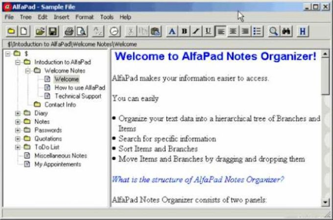 AlfaPad Notes Organizer