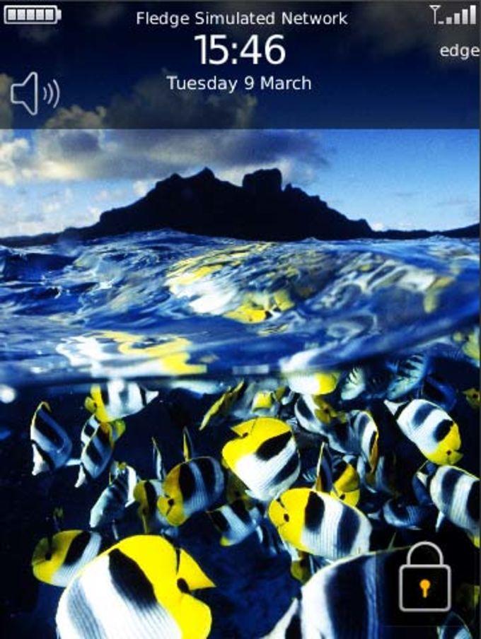 Bunte Fische Theme
