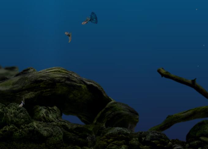 Aquazone Classic Expansion Pack