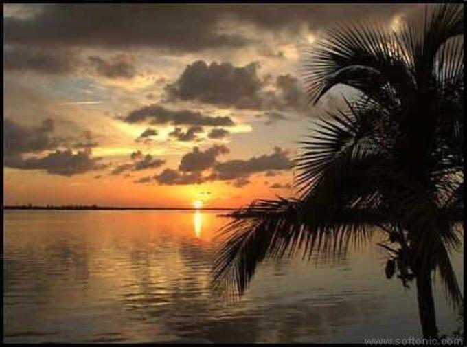 Beach Sunset Screensaver